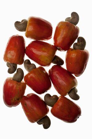 cashew tree: Cashew apples (anacardium occidentale) LANG_EVOIMAGES