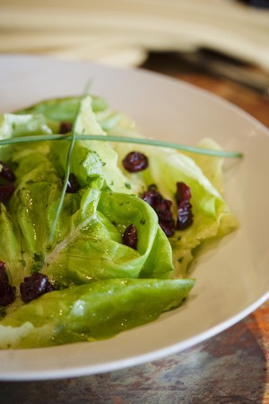 vaccinium macrocarpon: Green Salad with Dried Cranberries