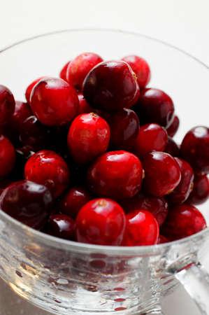 vaccinium macrocarpon: Fresh cranberries in glass cup (close-up)