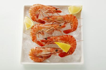 crushed ice: Shrimps with lemon on crushed ice