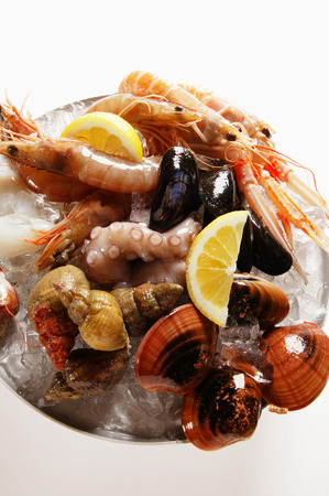 crushed ice: Seafood on plate of crushed ice