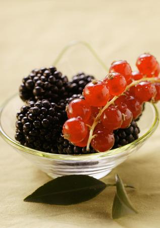 brambleberries: Blackberries and redcurrants in bowl LANG_EVOIMAGES
