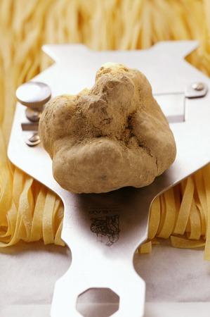 truffe blanche: La truffe blanche sur la truffe trancheuse; ruban p�tes