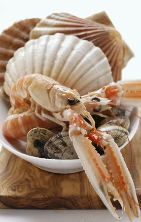 coquille: Scampi and shellfish in white dish