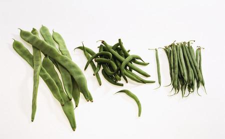 bobby: Green beans: French beans, Bobby beans, pole beans LANG_EVOIMAGES