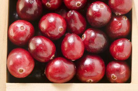 vaccinium macrocarpon: Cranberries in wooden box
