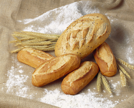 several breads: White breads and cereal ears on floured jute