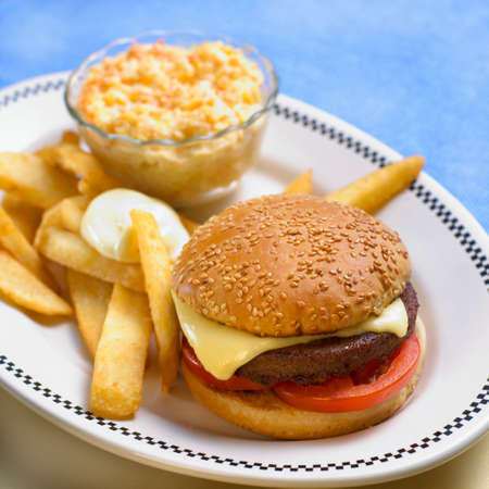 vegetarian hamburger: Vegetarian hamburger with chips and coleslaw LANG_EVOIMAGES
