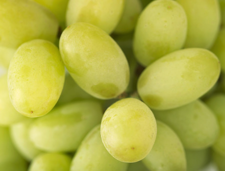 seedless: Seedless table grapes (filling the picture)