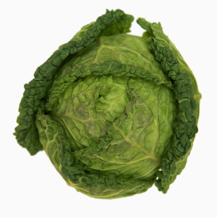 savoy cabbage: Savoy cabbage LANG_EVOIMAGES