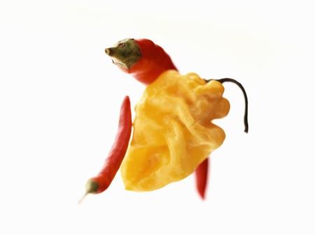 birdseye: Yellow Habanero chili and red Birdseye chili LANG_EVOIMAGES