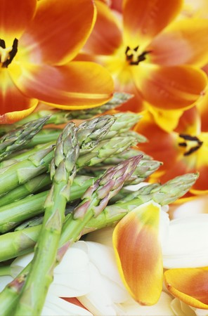 heralds: Heralds of spring: green asparagus and tulips
