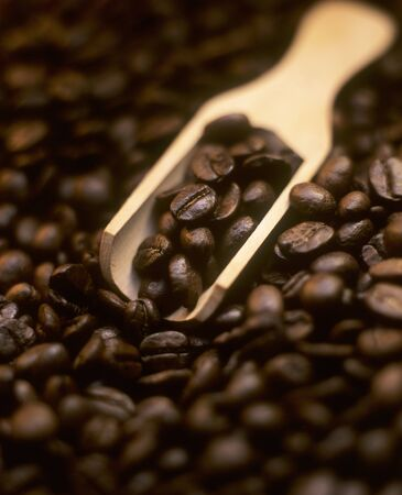 wooden scoop: Coffee beans with small wooden scoop