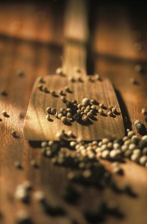 peppercorns: Peppercorns LANG_EVOIMAGES