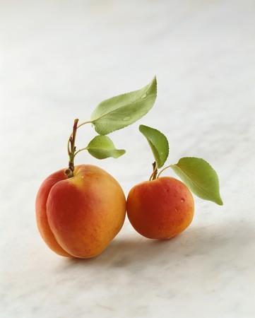in twos: Two Wachau apricots