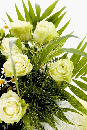 matricaria recutita: Bouquet di rose bianche, fiori di camomilla ed erbe
