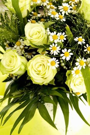 matricaria recutita: Disposizione di rose bianche, fiori di camomilla ed erbe LANG_EVOIMAGES