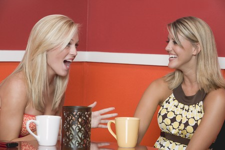 20 to 25 year olds: Two blond girls in café