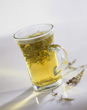 teas: Thyme tea in a tea glass LANG_EVOIMAGES