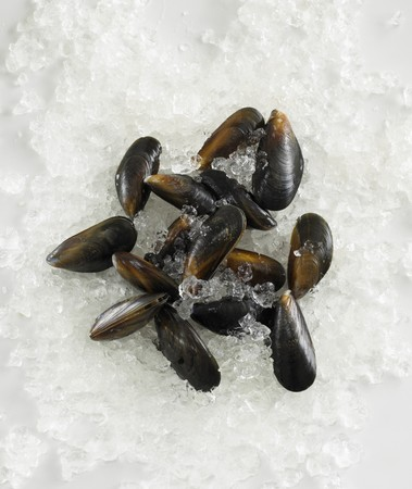 crushed ice: Mussels on crushed ice