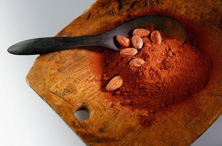cacao beans: Polvo de cacao y cacao en tabla de madera con cuchara LANG_EVOIMAGES