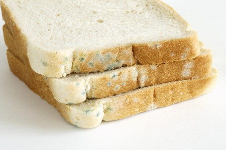 several breads: Mouldy sliced white bread