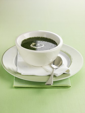 water cress: Watercress soup in a soup bowl LANG_EVOIMAGES