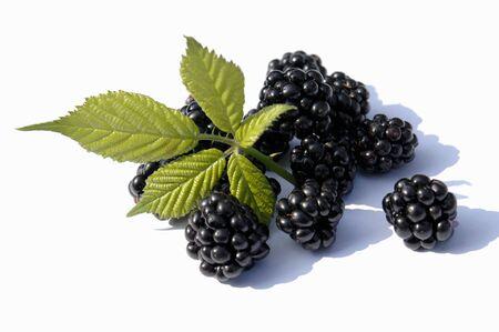 brambleberries: Fresh blackberries with leaves
