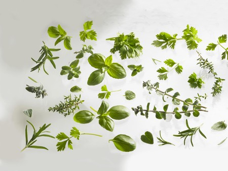 hyssop: Fresh herbs: basil, rosemary, thyme, hyssop etc.