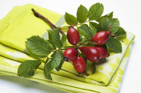 dish cloth: A sprig on rosehips on a dish cloth