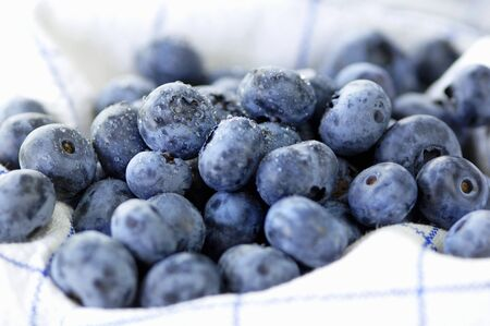 dish cloth: Lots of freshly washed blueberries on a dish cloth