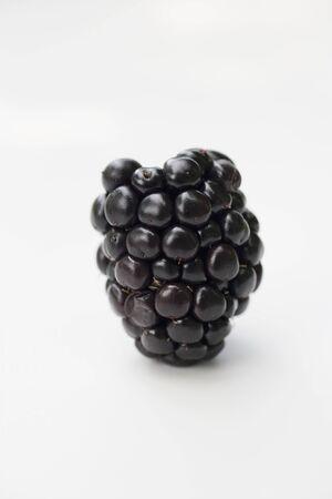 brambleberries: A blackberry LANG_EVOIMAGES