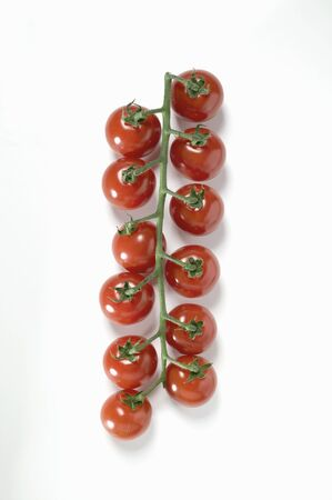 cherry tomatoes: Cherry tomatoes LANG_EVOIMAGES