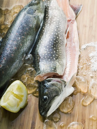 brook trout: Fresh charr, lemon and ice cubes LANG_EVOIMAGES