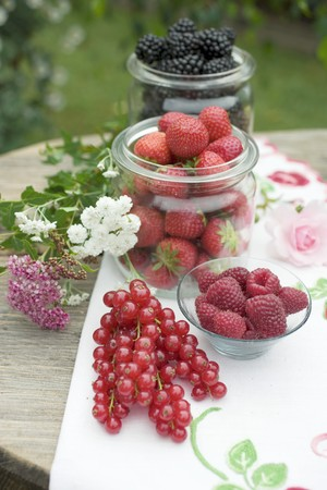 x country: Fresh berries on rustic table out of doors LANG_EVOIMAGES