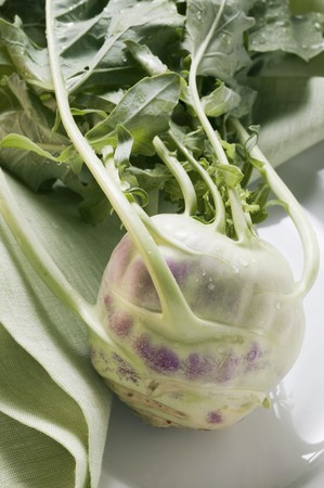 rabi: Kohlrabi with drops of water