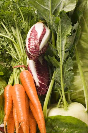 rabi: Fresh carrots, radicchio and kohlrabi (detail) LANG_EVOIMAGES