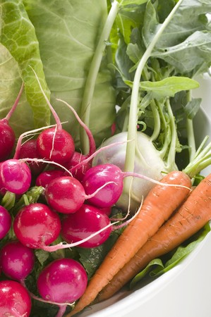 rabi: Radishes, pointed cabbage, kohlrabi and carrots in bowl LANG_EVOIMAGES