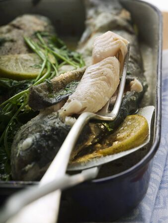 salmo trutta: Roast trout with piece on fork (detail) LANG_EVOIMAGES