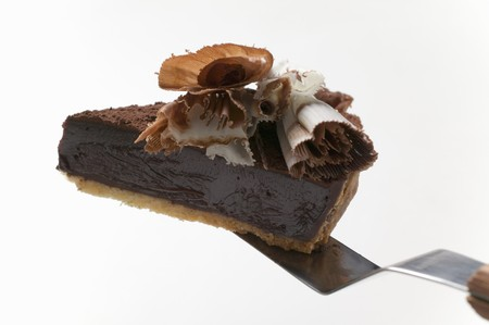 chocolate tart: Piece of chocolate tart on cake server LANG_EVOIMAGES