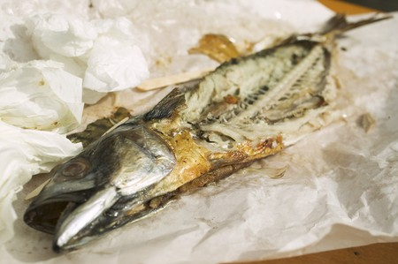Remains of Steckerlfisch (skewered fish) on paper