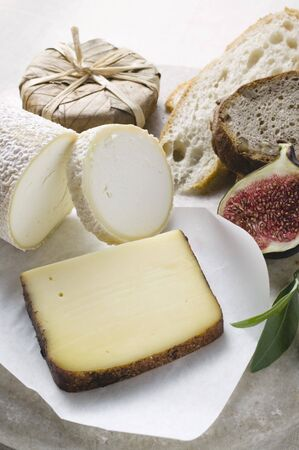 several breads: Cheese still life with bread and half a fig