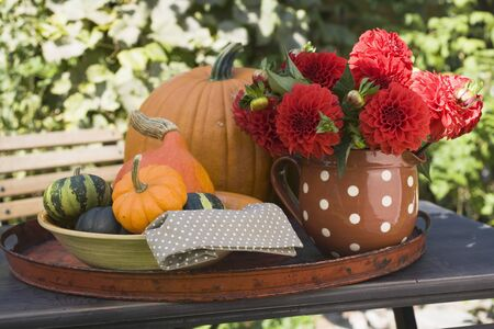 open air: Squashes, pumpkins and flowers on table in the open air