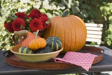 open air: Pumpkins, squashes and flowers on table in the open air LANG_EVOIMAGES