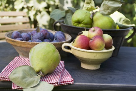 quinces: Plums, apples and quinces in bowls on garden table LANG_EVOIMAGES