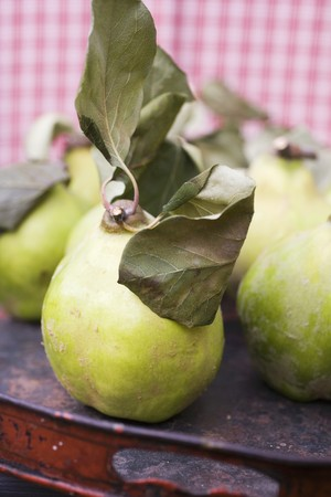 quinces: Quinces with leaves on tray LANG_EVOIMAGES