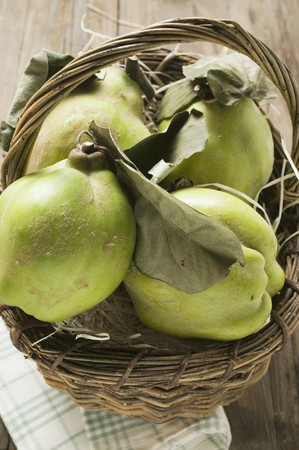 quinces: Fresh quinces with leaves in a basket