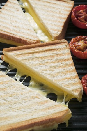 qs: Toasted cheese sandwiches & tomatoes on grill plate (close-up) LANG_EVOIMAGES
