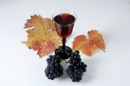 domina: Glass of red wine & black grapes, variety Domina, with leaves