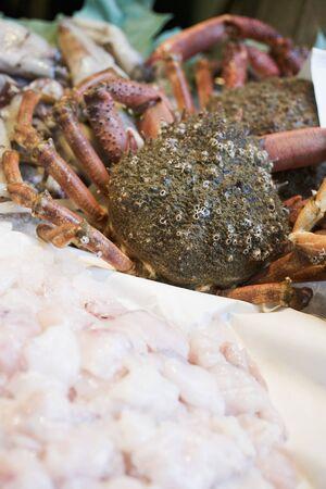 marine crustaceans: Fresh spider crabs on a market stall